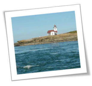 The Lonly Patos Light House Stands Guard Over The Shipping Lanes Between The U.S. and Canada