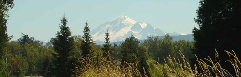 Mount Baker - Bellingham Real Estate - Bellingham Washington